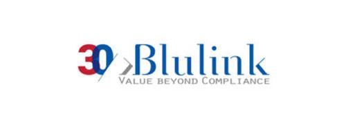 blulink reggio emilia logo